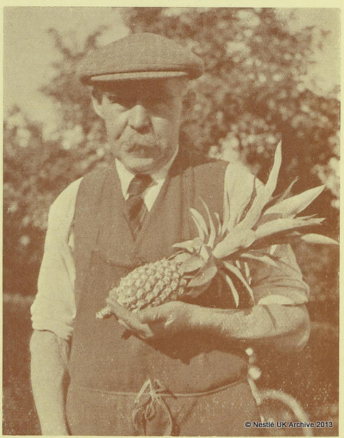 Mr Thornton and the pineapple that he grew at Rowntree's York factory