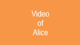 Alice At Work Video
