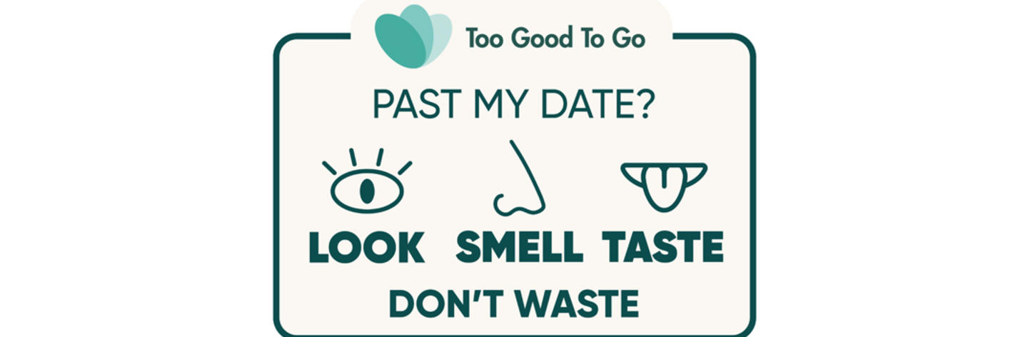 look smell and taste